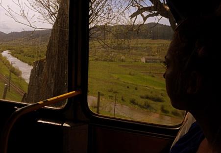 Jedziemy doliną rzeki Stryj.