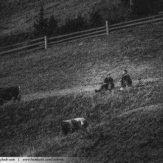 Pasterze - Libuchora